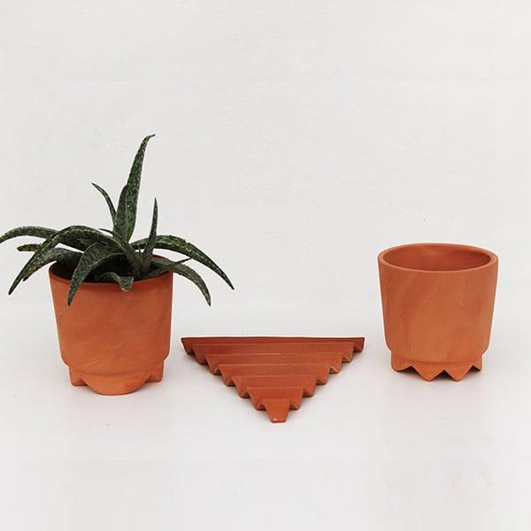 Acute Planter