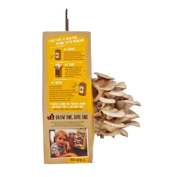 product image for Mushroom Farm