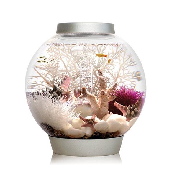 Baby BiOrb Aquarium With LED