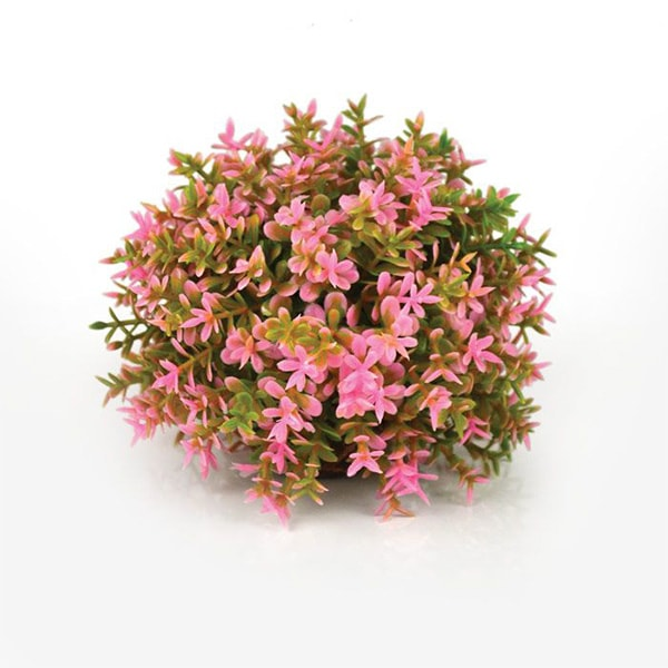 INOpets.com Anything for Pets Parents & Their Pets Biorb Plants And Decor