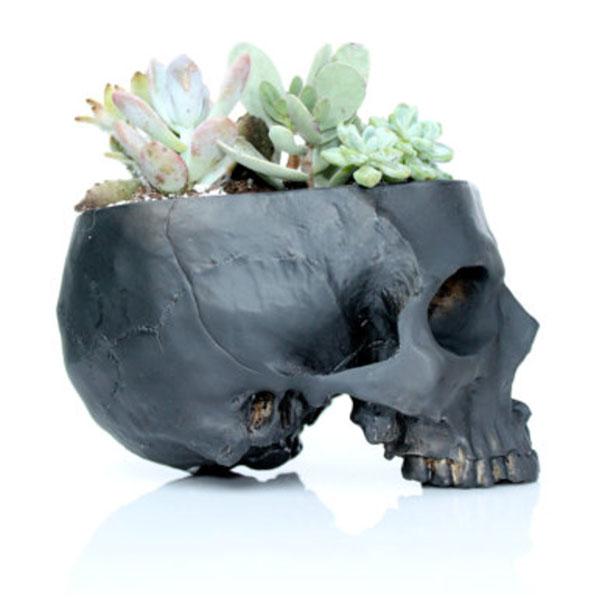 Cactus Skull Planter
