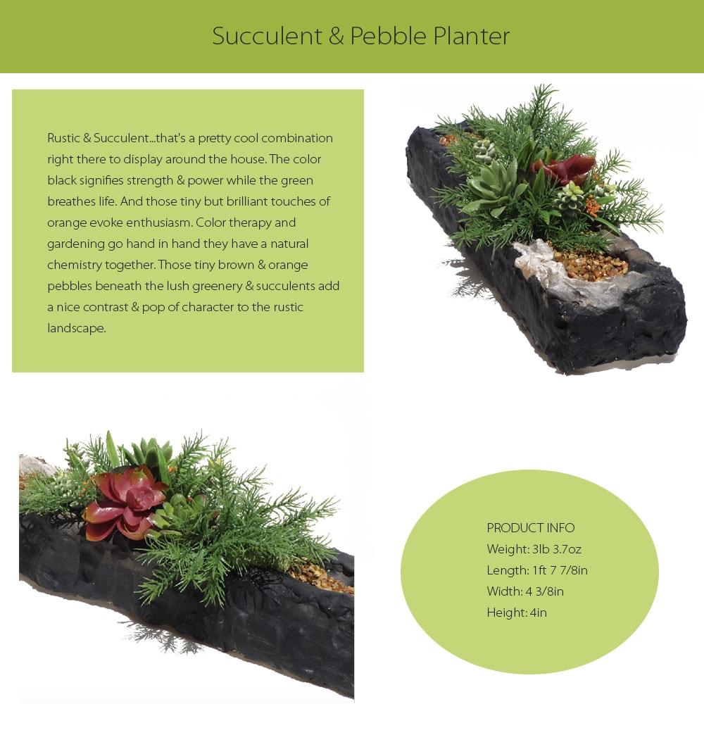 Succulent & Pebble Planter Mother Nature Inspired Landscapes Home Decor