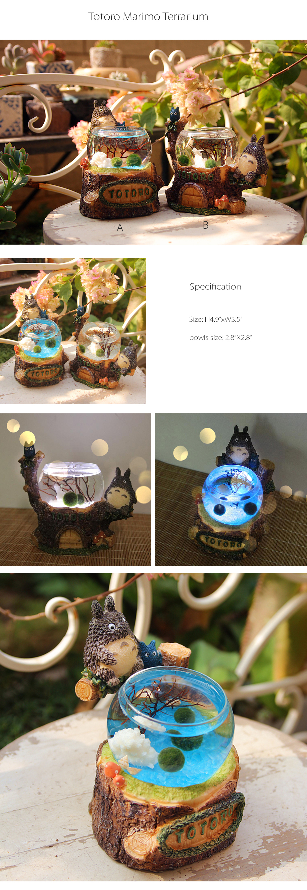 Totoro Marimo Terrarium Great Addition To Your Home