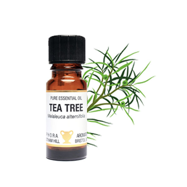 product image for Essential Oil Collection