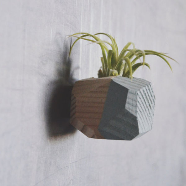 product image for Mini Geo Magnet w/Air Plant