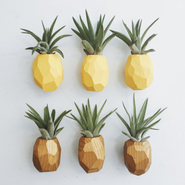 Pineapple Magnet w/Air Plant