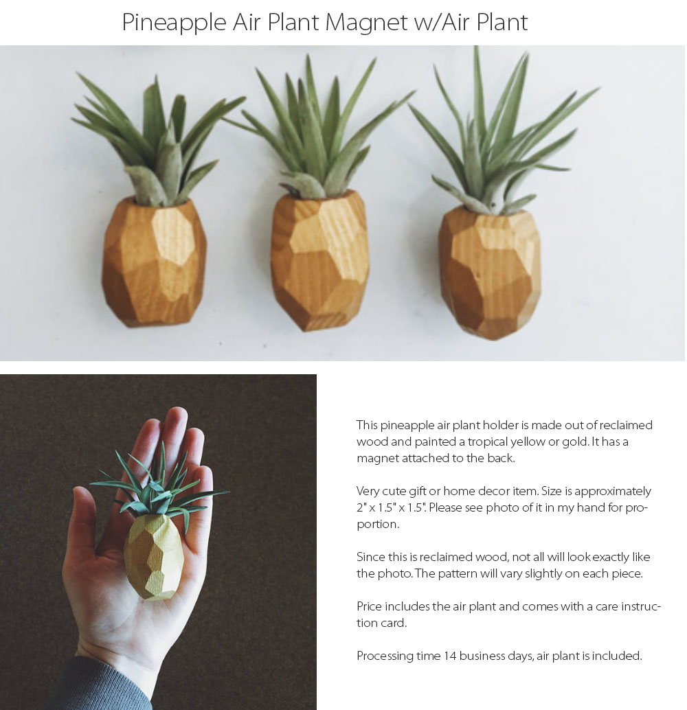 Pineapple Air Plant Magnet w/Air Plant Pineapple Collection