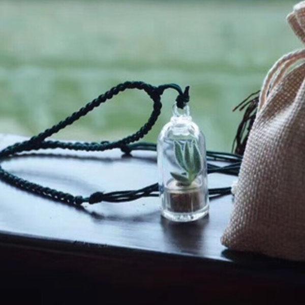 Miniature Plant Necklace