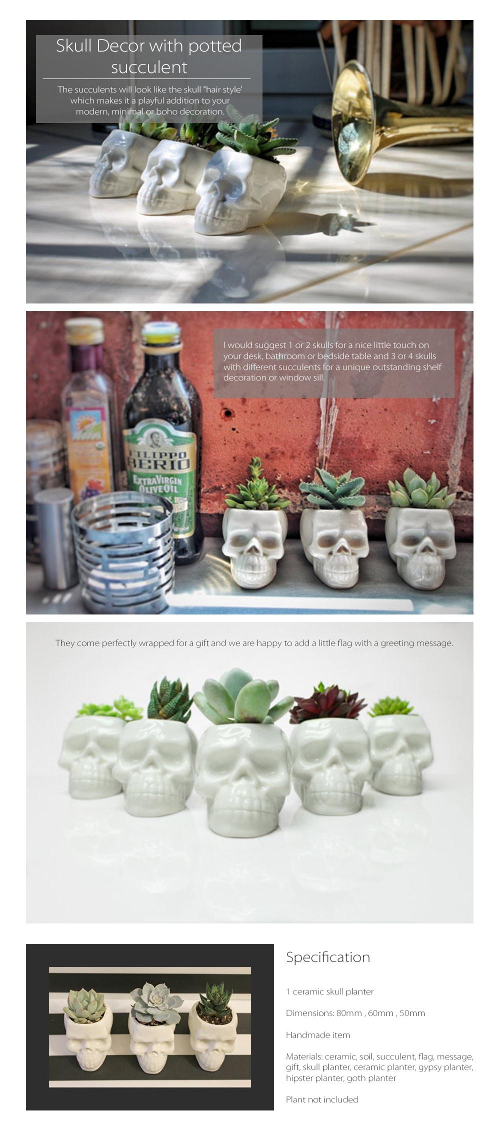 Skull Planters Simply Neat