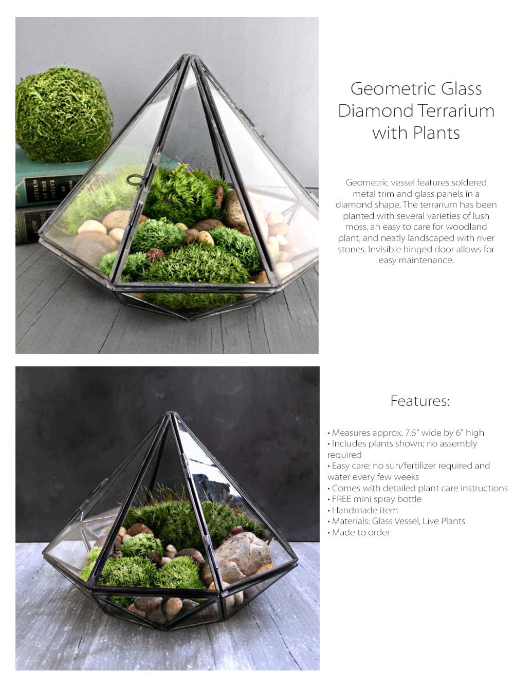 Geometric Glass Diamond Terrarium with Plants Miniature Landscape Garden