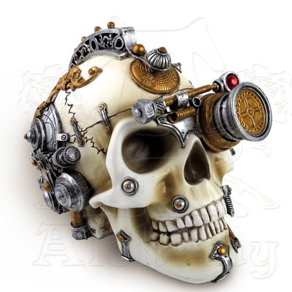 product thumbnail image for Erasmus Darwin's Steam-Cerebrum Skull