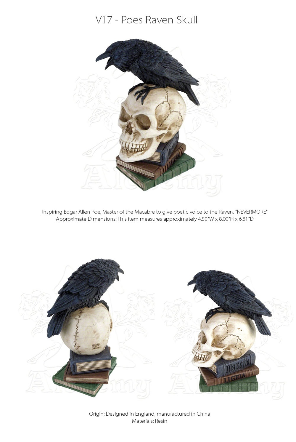Poes Raven Skull Designed in England