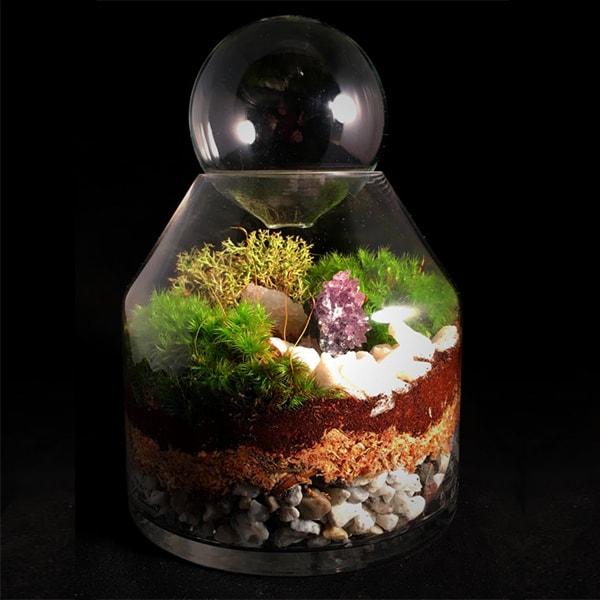Modern Amethyst Crystal Terrarium