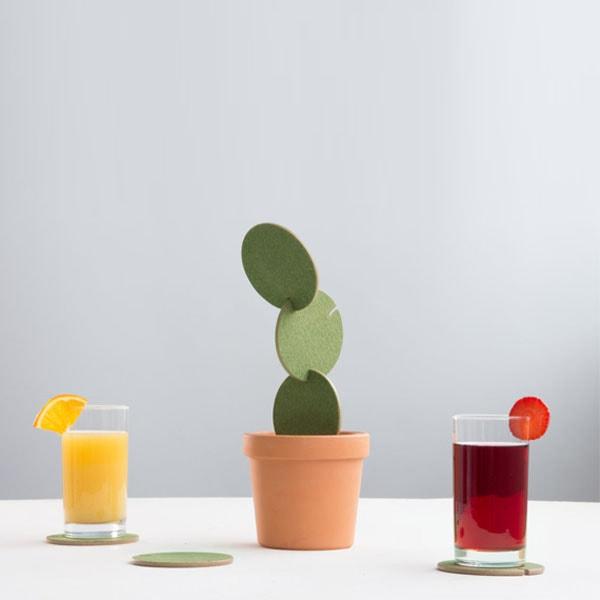 Cactus Coasters Construction Set