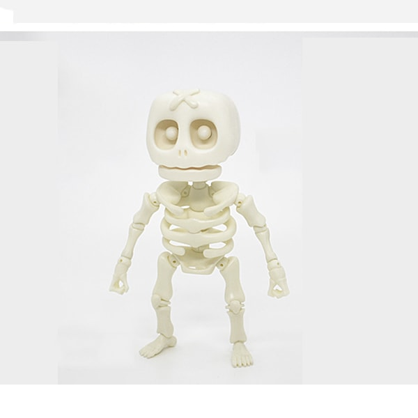 Skeleton Model 3D Puzzle